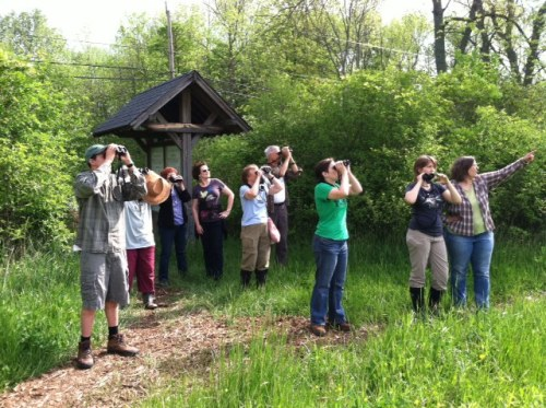 A flock of banders watching a flock of raptors.