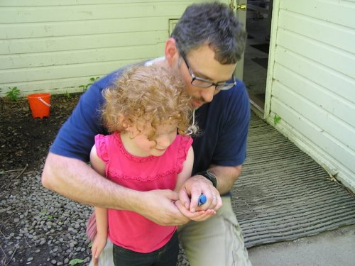 Jason (a BTC student and professor from Canisius) teaches his daughter Madeline to safely release an Indigo Bunting.