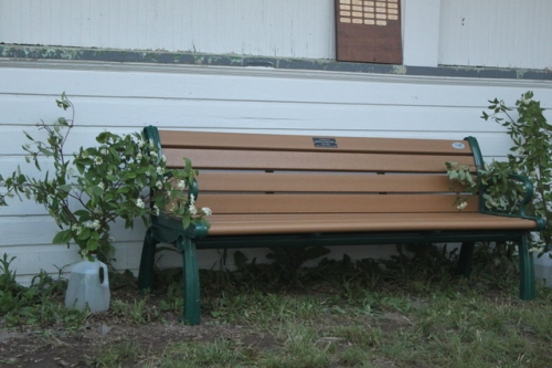Bench in memory of Dick O'Hara.  Photo by Ryan Kayhart