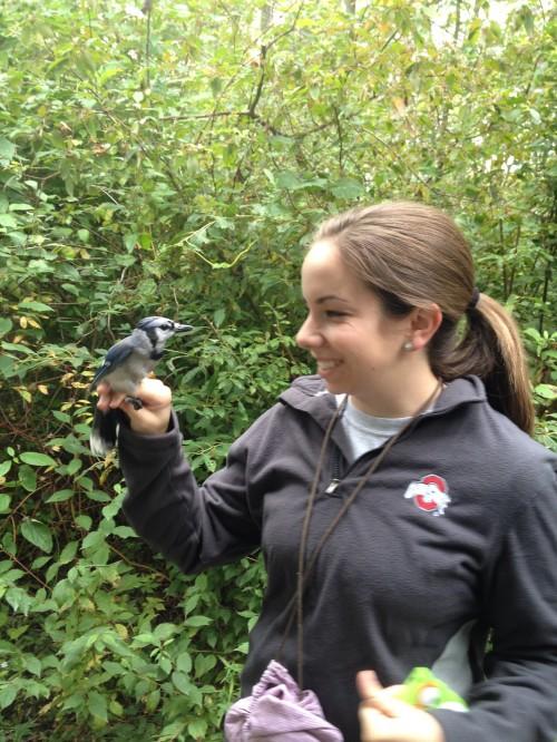 Elizabeth Admiring a Blue Jay