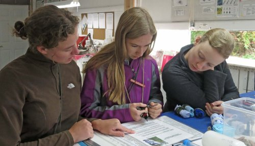 Jenna, Claire and Maggie studying the Downy Woodpecker Photo by Peggy Keller