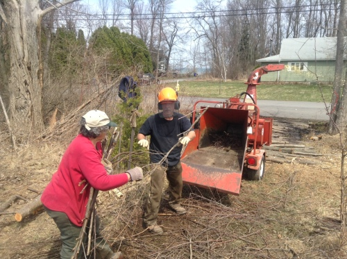 Pat Lovallo Brings More Alder to the Wood Chipper Run by Dave Mathiason Photo by Tom Klotzbach