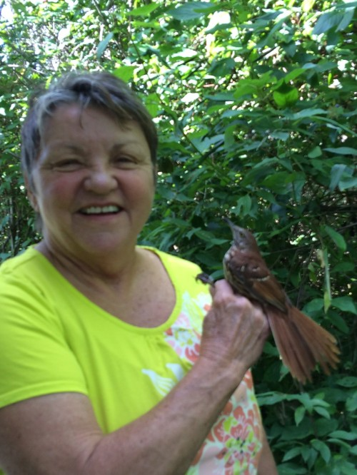 Virginia Duffy with Brown Thrasher!!! Photo by Peggy Keler